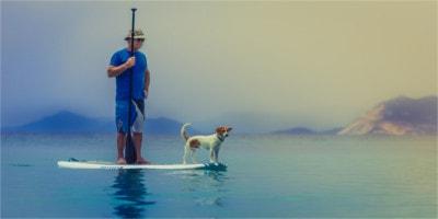 2019 legjobb SUP paddle board – vélemények és tippek a választáshoz