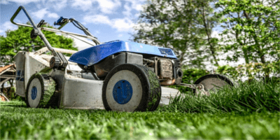 2019 legjobb kerti fűnyírói – recenziók és tippek a választáshoz